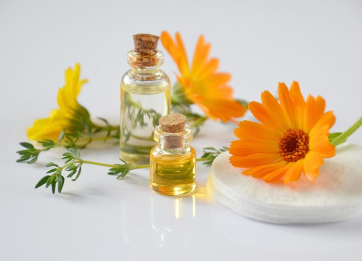 Essential Oils To Get Rid Of Bugs & Make Your Home Smell Wonderful